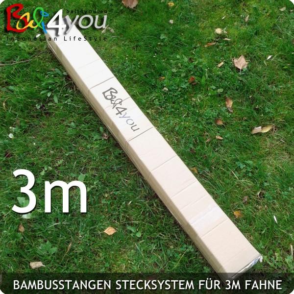 3m Bambus Stecksystem